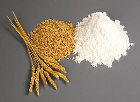 wheat flour แป้งสาลี หรือ แป้งข้าวสาลี