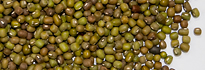 Mung Beans Unpolished Type Product of Toumi Foods